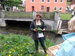 """Gabriele Leonie Bräutigam, Autorin von """"Wilde Grüne Smoothies"""""""