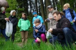grüne Smoothies Wildkräuter-Führung mit Andrea Nossem © Egon Rohe