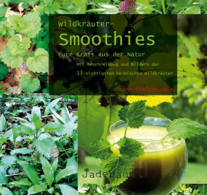 Wildkräuter-Smoothies Evelyne Laye