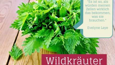 Wildkräuter grüne Smoothies