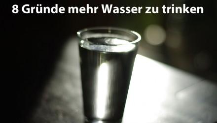 Mehr Wasser trinken Gründe und Tipps