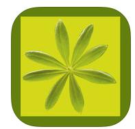 grüne Smoothies Apps - Essbare Wildpflanzen