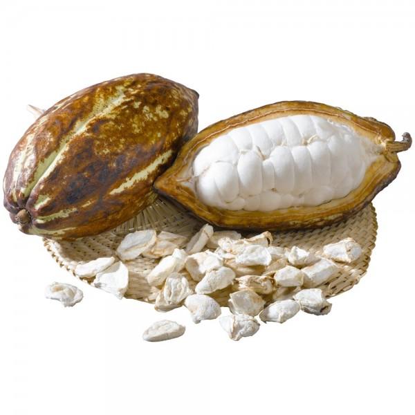Rohkost-Kakaobohnen mit Fruchtfleisch 2,5 kg