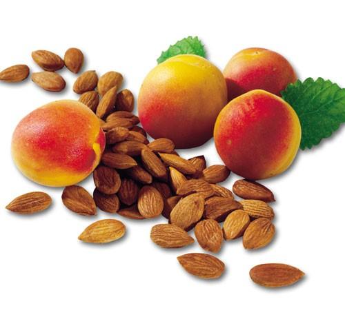 Süße Aprikosenkerne 2,5 kg Rohkost-Qualität